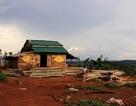 Đắk Nông: Phó trưởng công an xã vô tư chiếm dụng đất công