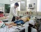 Bệnh nhi mắc sốt xuất huyết tăng vọt: Phụ huynh không nên lơ là