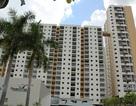 Góc nhìn mới về nhà ở tái định cư qua dự án căn hộ Bình Khánh