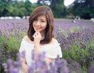Ngắm vẻ yêu kiều của nữ thạc sĩ Việt giữa cánh đồng oải hương