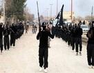 IS mắc sai lầm giống al-Qaeda