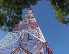 Điều gì kế tiếp con số 50% thị phần 3G của Viettel?