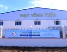 Doanh nghiệp Việt nâng tầm cạnh tranh nhờ hợp tác quốc tế nâng cao chất lượng