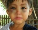 Thực hư hai vụ bạo hành bé gái ở Cà Mau