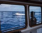 Philippines công bố ảnh tàu Trung Quốc vây bãi cạn Scarborough