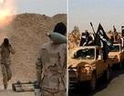 Palmyra: Quân đội Syria sắp mất sân bay T4, Quraytayn nguy ngập