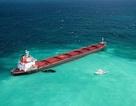 Australia đòi tàu Trung Quốc bồi thường 90 triệu USD vì phá hủy vỉa san hô