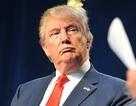 Mô hình kinh tế dự đoán Donald Trump thua đậm trong bầu cử