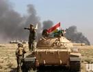 Iraq tuyên bố chiến dịch giải phóng Mosul thực sự bắt đầu
