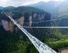 Đứng tim bước trên cây cầu kính cao nhất thế giới vắt qua vực thẳm