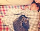 Dễ thương như bé với bạn... mèo