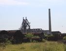 Khai tử nhà máy thép 500.000 tấn/năm tại Khu kinh tế Vũng Áng
