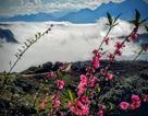 Sapa, mảnh đất 4 mùa xinh đẹp