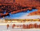 Đẹp mơ màng những chuyến tàu về quê ăn Tết