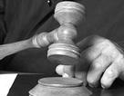 Bị phạt 15.000 USD nếu từ chối... kết hôn
