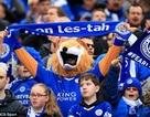 Leicester có thể vô địch Premier League vào sáng mai