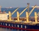 """Vinalines xin bán tàu để giảm """"căng thẳng"""""""