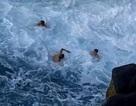 """Mạo hiểm tìm cảm giác mạnh tại """"bể bơi tử thần"""""""