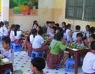 Hai sở phối hợp đưa bữa ăn sạch vào trường học