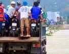 Bình Định: Dân sợ băng dòng lũ, xe tải kiếm tiền triệu mỗi ngày