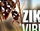 2 chị em ruột cùng nhiễm vi rút Zika