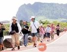 """Nhóm 46 du khách Việt """"biến mất bí ẩn"""" ở Hàn Quốc"""
