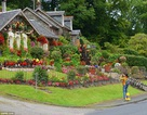 Làm thế nào để biến khu vườn cỏ dại thành điểm du lịch hút khách?