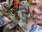 Hưng Yên: Đi toi 30 triệu đồng vì nhờ con gái sấy tiền cho khô
