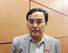 Chủ tịch Tập đoàn Điện lực Việt Nam lý giải việc dừng nhà máy điện hạt nhân