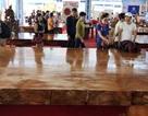 """Cặp phản gỗ """"hoàng gia"""" lớn nhất Việt Nam giá 5,5 tỷ đồng"""