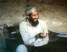 """Trưởng đại diện CIA """"bị đầu độc"""" sau vụ tiêu diệt Osama bin Laden"""