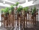 Công trình kiến trúc Việt Nam tham dự triển lãm kiến trúc hàng đầu tại Ý