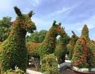 """Vườn thú bằng cây kiểng """"siêu độc"""" của nghệ nhân Tiền Giang"""