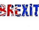 Người Anh lên tiếng: Đã đến lúc rời EU (Bài I)