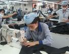 Tổng kết 3 năm thi hành Luật Lao động: Không làm giảm quyền lợi người lao động