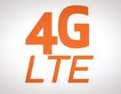 Điểm mặt 5 smartphone 4G giá dưới 5 triệu tại Việt Nam