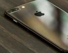Đổi tên thành iPhone Bảy để được iPhone 7