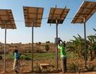 Năng lượng tái tạo phá kỷ lục toàn cầu trong năm 2015