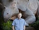 Động vật có vú chỉ đa dạng sau khi khủng long tuyệt chủng