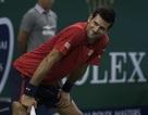 Thượng Hải Masters: Djokovic ngược dòng vào bán kết