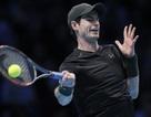 Murray toàn thắng ở vòng bảng như Djokovic