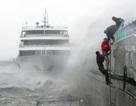 Hàn Quốc: Bão lũ mạnh như sóng thần cuốn trôi nhà cửa, ô tô