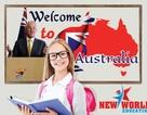 Úc - Quốc gia không ngại đổi mới chính sách giáo dục thu hút nhân tài 2016