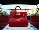 Chiếc túi đắt nhất thế giới gần 7 tỷ đồng có gì đặc biệt?