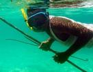 Thợ săn Nga bắn chết bạn vì tưởng nhầm là cá
