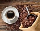 Caffeine có khả năng làm chậm bệnh Parkison