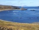 Nga sắp xây căn cứ hải quân có thể làm thay đổi cán cân quân sự ở Thái Bình Dương
