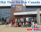 Hội thảo Visa ưu tiên CES Niagara College Canada cùng gói quà tặng 5 triệu đồng