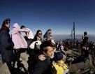 Đua nhau lên đỉnh Phan Si Păng trong ngày Lễ tình yêu