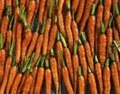 Cà-rốt có giúp cải thiện thị lực của bạn?